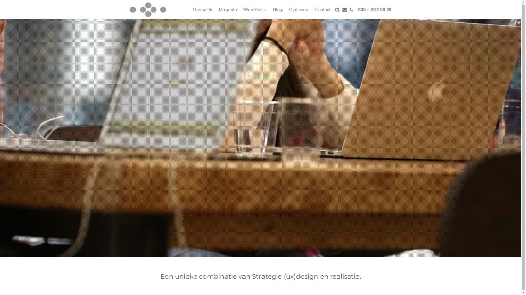 WebsiteSnapshot